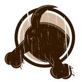 Собака сбора винограда Стоковое Изображение