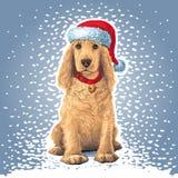 Собака сидя в шляпе Санты Стоковое Изображение