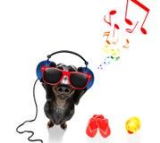 Собака слушая музыку стоковые фото