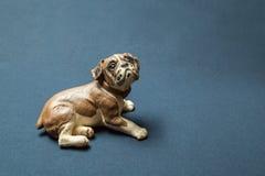Собака сфотографированная против темной предпосылки Стоковое Изображение