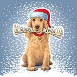 Собака с газетой в его рте Стоковая Фотография RF