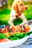 Собака с едой Стоковое фото RF