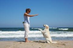 Собака учащийся женщины на пляже стоковое фото