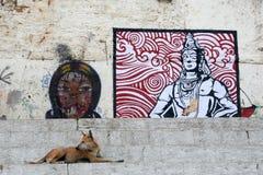 Собака улицы бесплатная иллюстрация