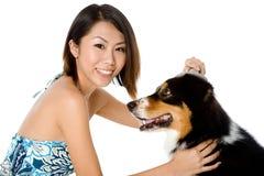 Собака холить Стоковое Изображение