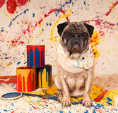 собака художника Стоковая Фотография
