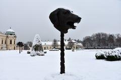 собака Часть круга животных/зодиака возглавляет выставку Стоковое Изображение