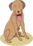 собака шаржа смешная Стоковое фото RF