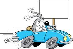 Собака шаржа управляя автомобилем и держа знак Стоковое фото RF