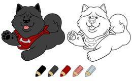 Собака шаржа чау-чау Chow милая Версия книжка-раскраски вектора Стоковое Изображение RF
