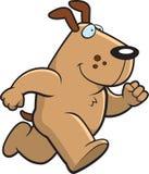 собака шаржа Стоковое фото RF