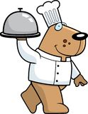 собака шеф-повара бесплатная иллюстрация
