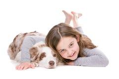 Собака щенка Коллиы границы Стоковое фото RF