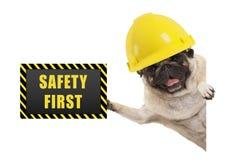 Собака щенка мопса Frolic усмехаясь с желтым шлемом конструктора, задерживающ черную и желтую доску знака безопасность прежде все стоковое изображение rf