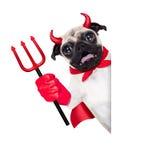 Собака дьявола хеллоуина Стоковые Фотографии RF