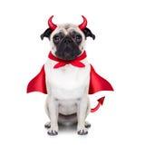 Собака дьявола хеллоуина Стоковая Фотография RF