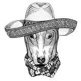 СОБАКА для Диких Западов иллюстрации партии мексиканськой фиесты sombrero дикого животного дизайна футболки нося мексиканских Стоковое Изображение