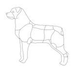 собака иллюстрация штока
