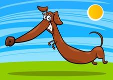 собака dachshund шаржа счастливая Стоковое Фото