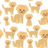 Собака Kawaii безшовной картины смешная золотая бежевая, сторона с большими глазами и розовыми щеками, мальчик и девушка изолиров Стоковое фото RF