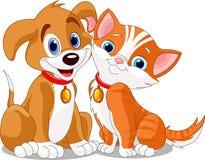 собака n кота Стоковое Изображение