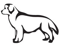 собака newfoundland Бесплатная Иллюстрация