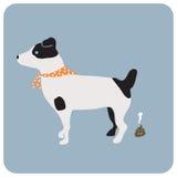 Собака Poo стоковая фотография rf