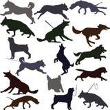 Собака silhouettes иллюстрация Стоковые Изображения RF