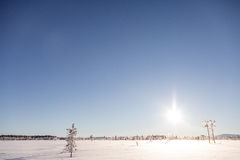 Собака sledding в Лапландии Стоковые Изображения RF