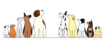 Собаки в ряд, смотрящ центр иллюстрация штока