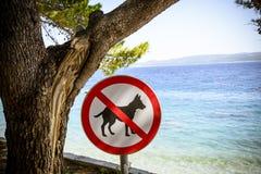 Собаки запрещенные от знака пляжа. Стоковые Фотографии RF