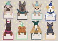 собаки крышек Стоковое Изображение