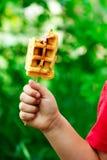 Собаки мозоли Waffle Стиль деревенский стоковые изображения rf