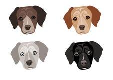 Собаки Стоковое Изображение RF