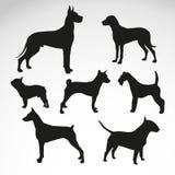Собак-порода-силуэт-вектор-дизайн Бесплатная Иллюстрация
