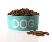собачья еда стоковая фотография rf