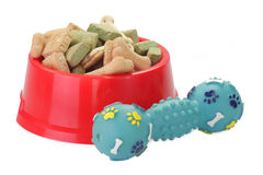 собачья еда шара Стоковое фото RF