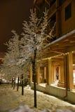 Собираннсяые деревья и тепло внешние витрины магазина Lit на горнолыжном курорте сига стоковые изображения rf