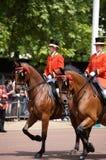 собираться толпой london предохранителя цвета королевский Стоковое Фото