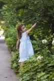 собирать листья малыша Стоковое фото RF