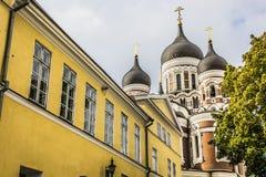 Собор Александра Nevsky, правоверная церковь собора в стоковые фотографии rf