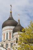 собор Александра nevsky Стоковое фото RF