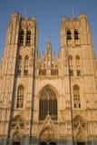Собор Брюссель Стоковое Фото