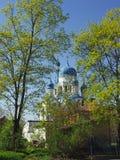 Собор весной растительности Собор Pokrovsky в Gatchina Россия Стоковое Фото