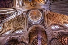 Собор Испания Саламанки каменных статуй купола столбцов новый Стоковые Изображения RF