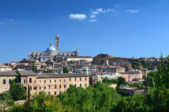 собор Италия siena стоковое фото