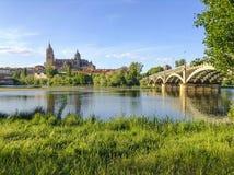 Собор и река Саламанки Стоковые Фото