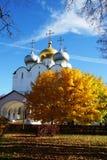 Собор монастыря Novodevichy, Москва Смоленска, Россия Стоковые Фотографии RF
