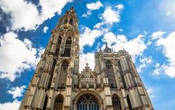 Собор нашей дамы в Антверпене - Бельгии стоковые изображения rf