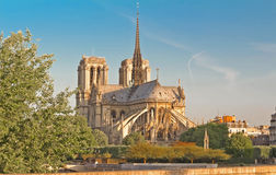 Собор Нотр-Дам, Париж, Франция Стоковая Фотография RF